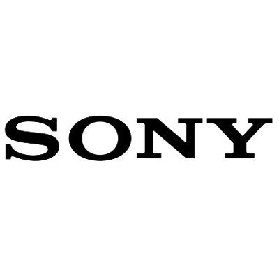 Początek końca czy przejściowe kłopoty- Sony ma problem
